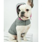 Quilted Dog Hoodie Pink 4