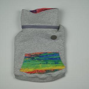 Bluza dla psa Colourful